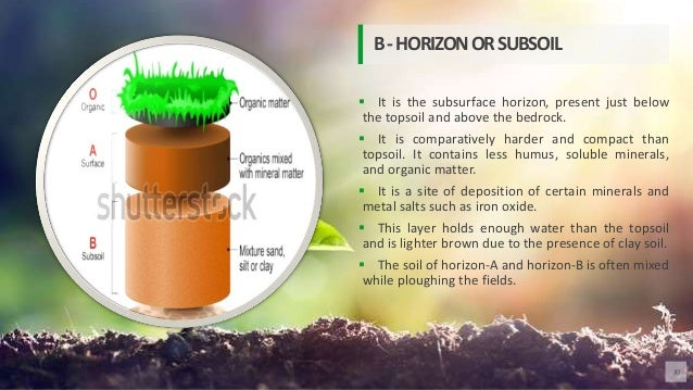  It is the subsurface horizon, present just below the topsoil and above the bedrock.  It is comparatively harder and com...
