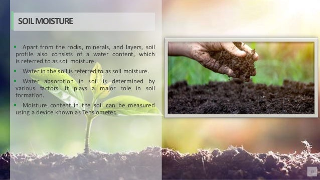33  Apart from the rocks, minerals, and layers, soil profile also consists of a water content, which is referred to as so...