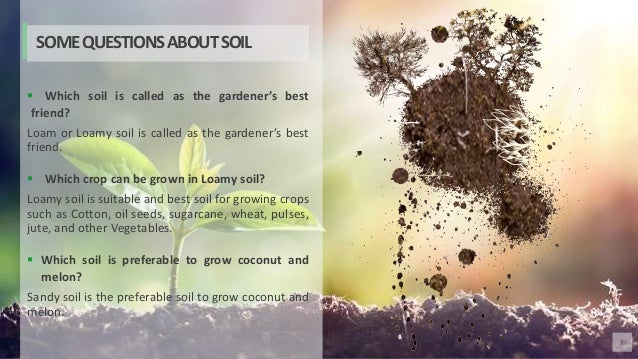 50  Which soil is called as the gardener's best friend? Loam or Loamy soil is called as the gardener's best friend.  Whi...