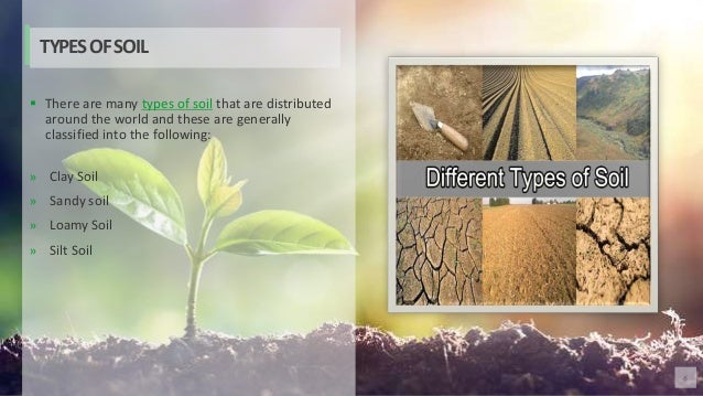 6  There are many types of soil that are distributed around the world and these are generally classified into the followi...