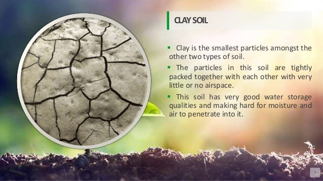  Clay is the smallest particles amongst the other two types of soil.  The particles in this soil are tightly packed toge...