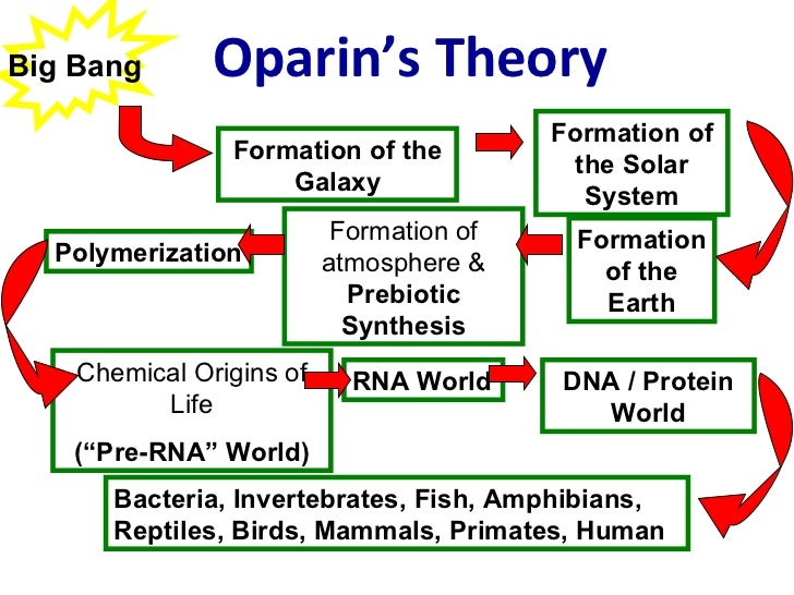 oparin haldane hypothesis The author reflects on the theories pertaining to the origin of life on the earth including the chemical origin hypothesis by biochemist alexander oparin and biological scientist jbs haldane, panspermia theory, and genetic first hypothesis.