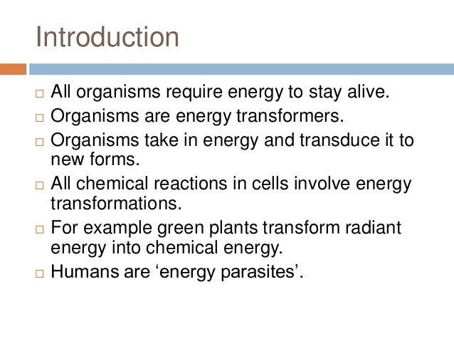 Biological thermodynamics Slide 3