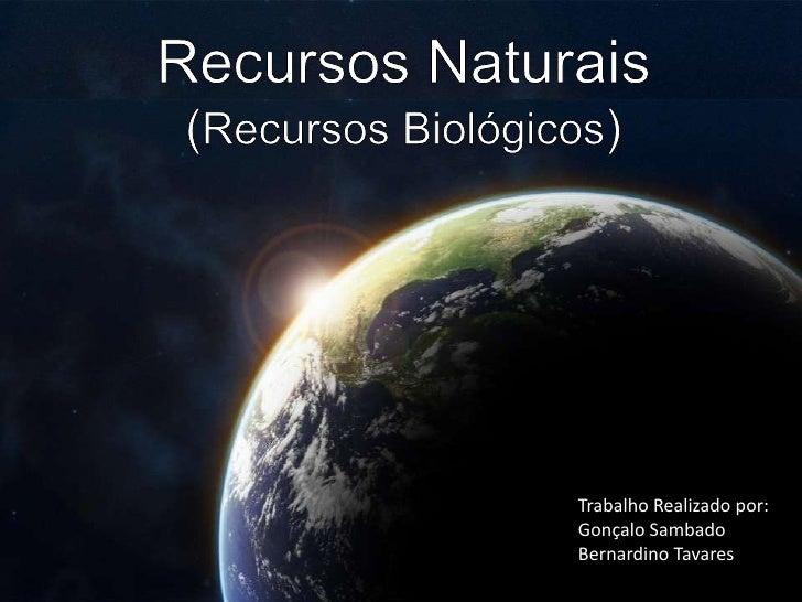 Recursos Naturais (Recursos Biológicos)<br />Trabalho Realizado por: <br />Gonçalo Sambado<br />Bernardino Tavares<br />