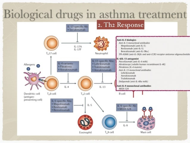 empirical literature on asthma care Socioeconomic determinants of health  232 review of published empirical evidence relating to  database structure used as part of the review of literature 109.