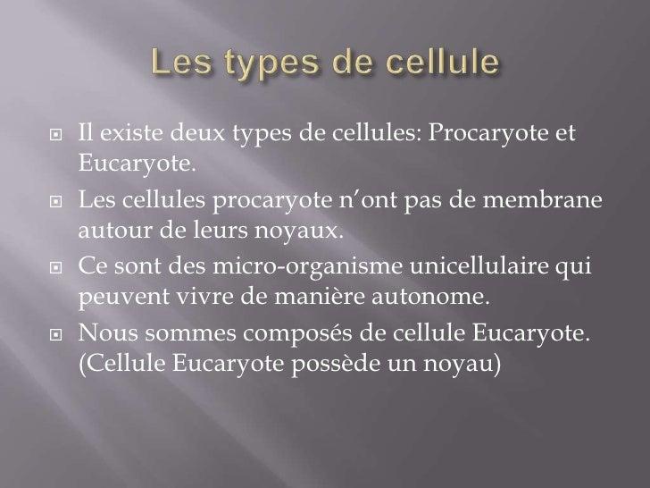 Biologie cellulaire Slide 2