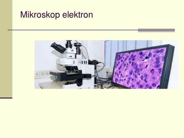 Buku biologi universitas tentang mikroskop pengenalan mikroskop u