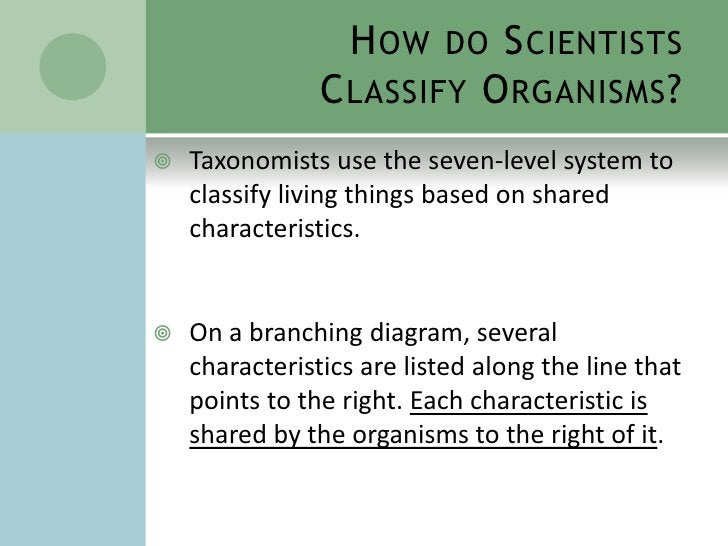 How do Scientists Classify Organisms?<br />Taxonomists use the seven-level system to classify living things based on share...