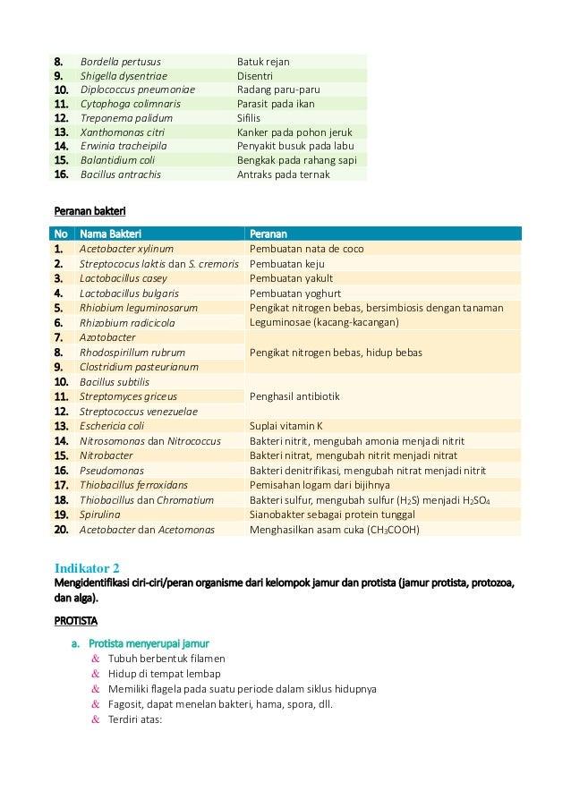 Biologi un 2014 materi Slide 3