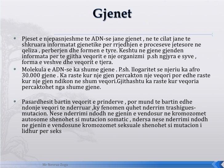 <ul><li>Pjeset e njepasnjeshme te ADN-se jane gjenet , ne te cilat jane te shkruara informatat gjenetike per rrjedhjen e p...