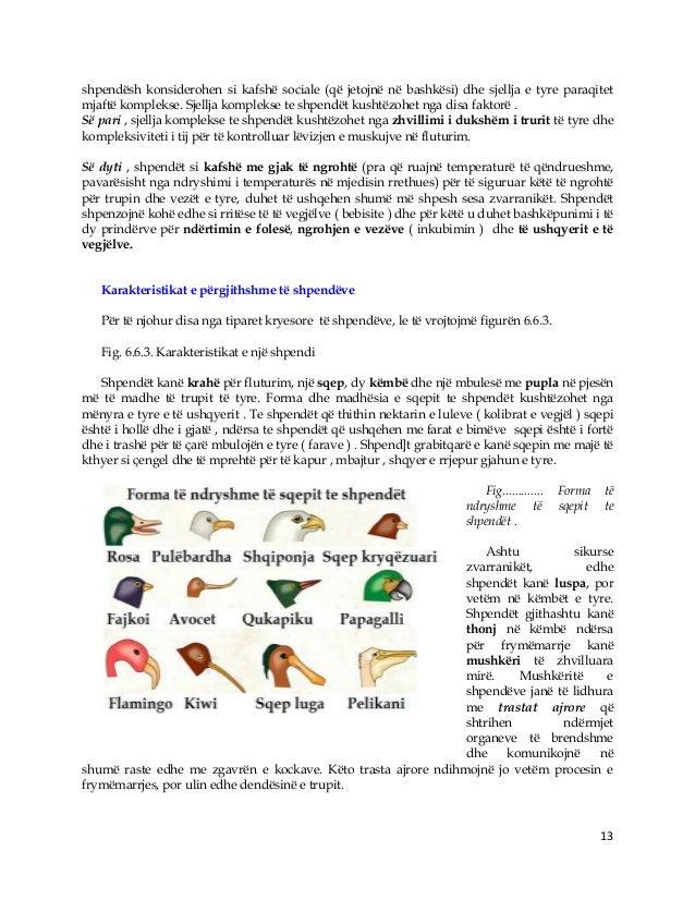 13 shpendësh konsiderohen si kafshë sociale (që jetojnë në bashkësi) dhe sjellja e tyre paraqitet mjaftë komplekse. Sjellj...