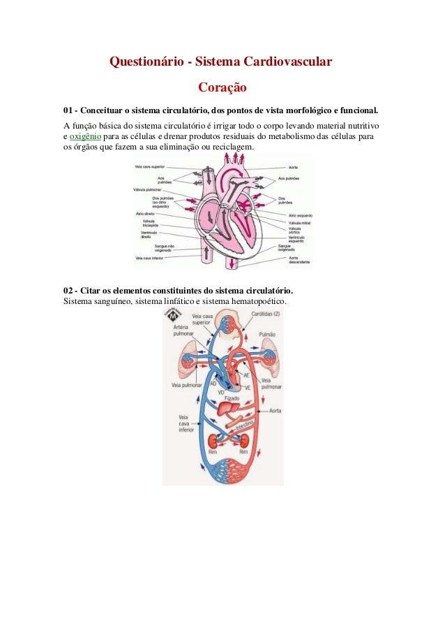 Questionário - Sistema Cardiovascular  Coração  01 - Conceituar o sistema circulatório, dos pontos de vista morfológico e ...
