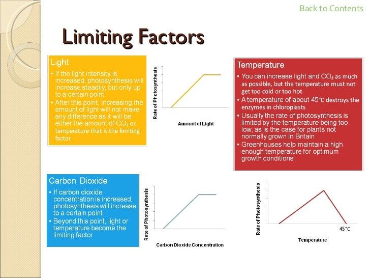 GCSE Biology Revision – Limiting Factors Worksheet