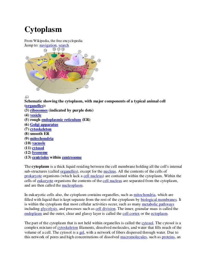 CytoplasmFrom Wikipedia, the free encyclopediaJump to: navigation, searchSchematic showing the cytoplasm, with major compo...