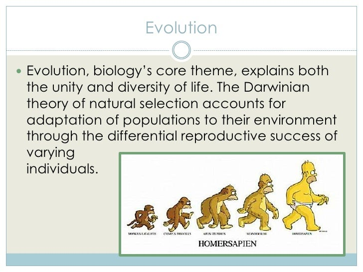 Diversity essay evolution life selected