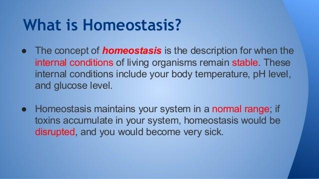Biology PPT Homeostasis