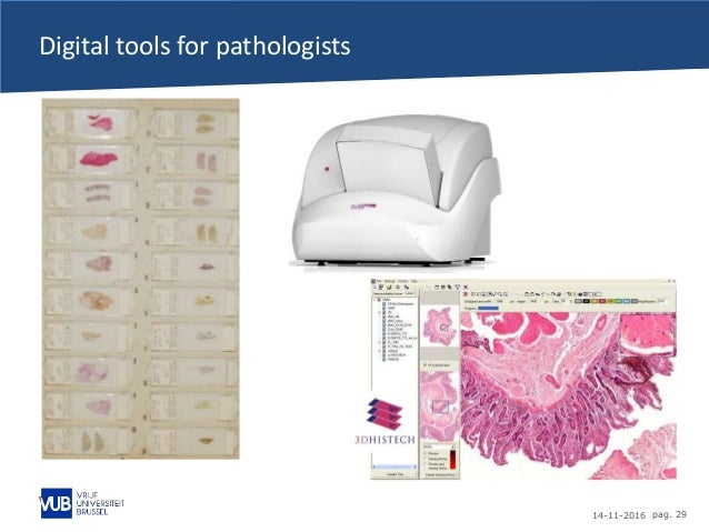 14-11-2016 pag. 29 Digital tools for pathologists