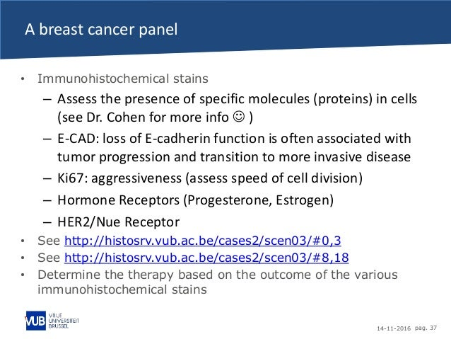 14-11-2016 pag. 37 A breast cancer panel • Immunohistochemical stains – Assess the presence of specific molecules (protein...