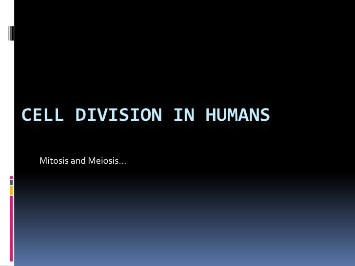 Cell division in Humans<br />Mitosis and Meiosis…<br />