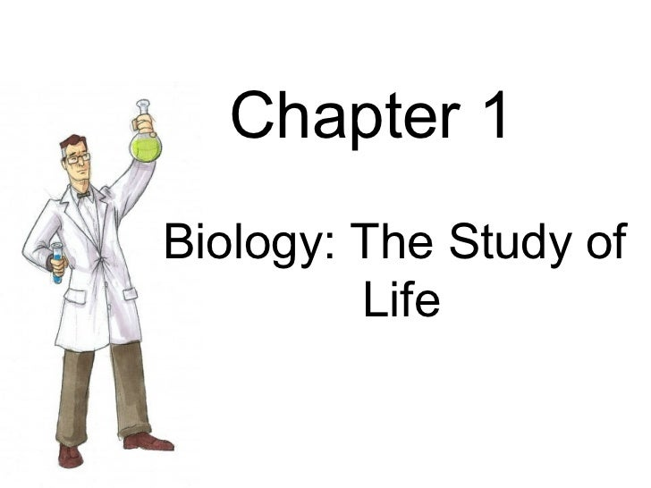 Biology Chapter 1: The Study of Life Flashcards | Quizlet