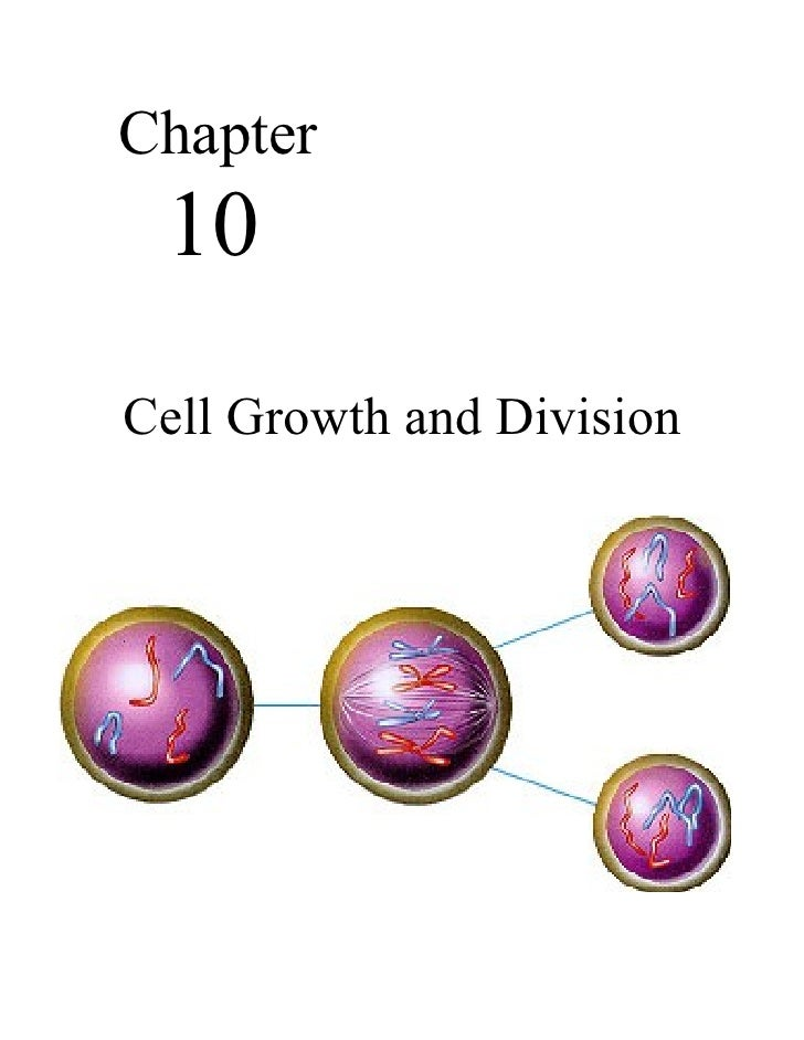 Chapter 10Cell Growth and Division