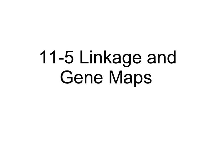 Biology - Chp 11 - Introduction To Genetics - PowerPoint on