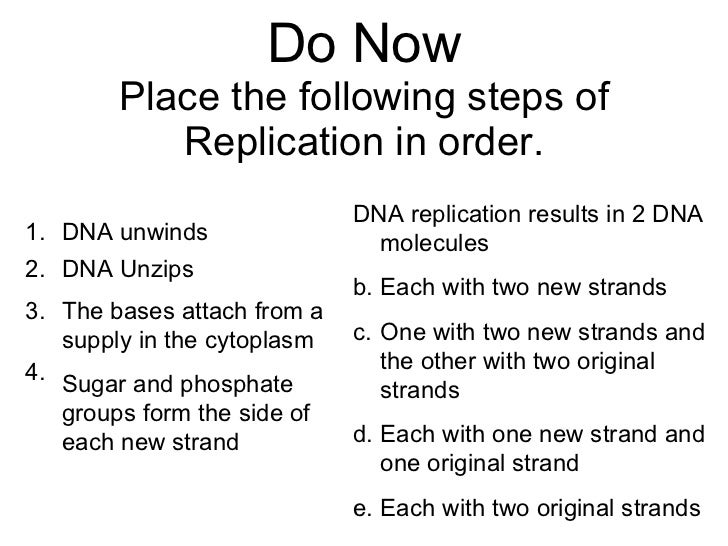 Biology Chp 12 DNA RNA PowerPoint – Dna Replication Activity Worksheet