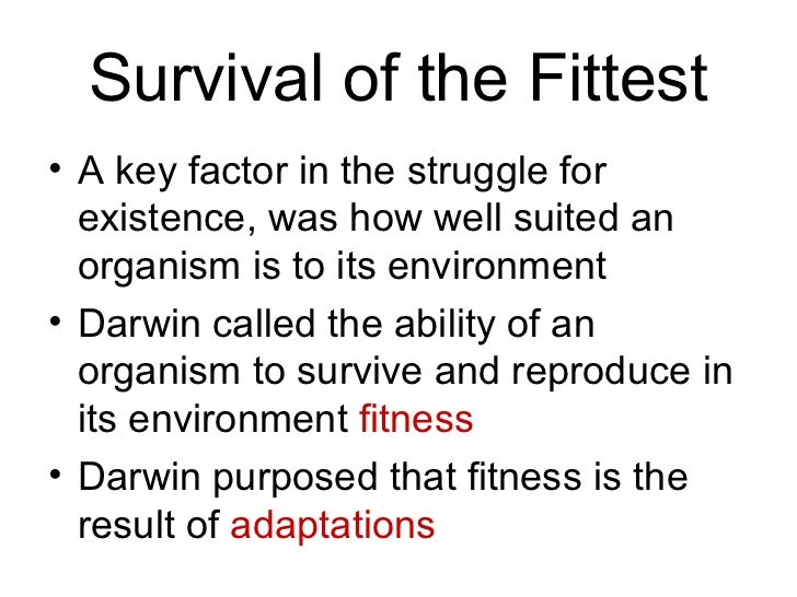 Image result for darwin and survival of the fittest