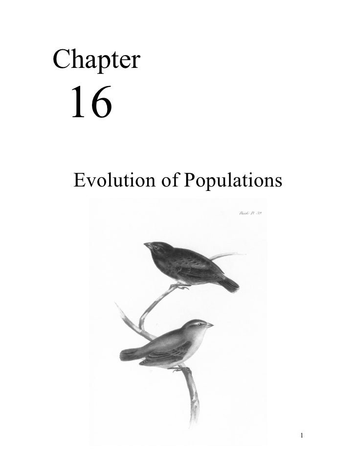 Chapter 16 Evolution of Populations                            1
