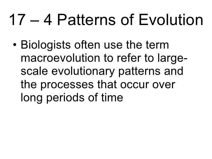 Biology Chp 17 History Of Life PowerPoint – Patterns of Evolution Worksheet