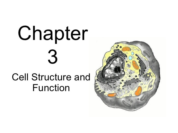 Chapter   3Cell Structure and     Function