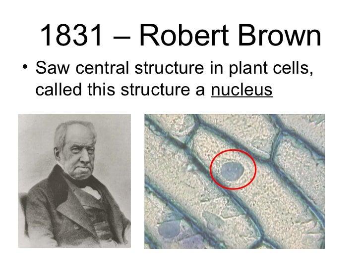 robert brown scientist