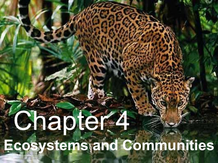 Ecosystems and Communities Chapter 4