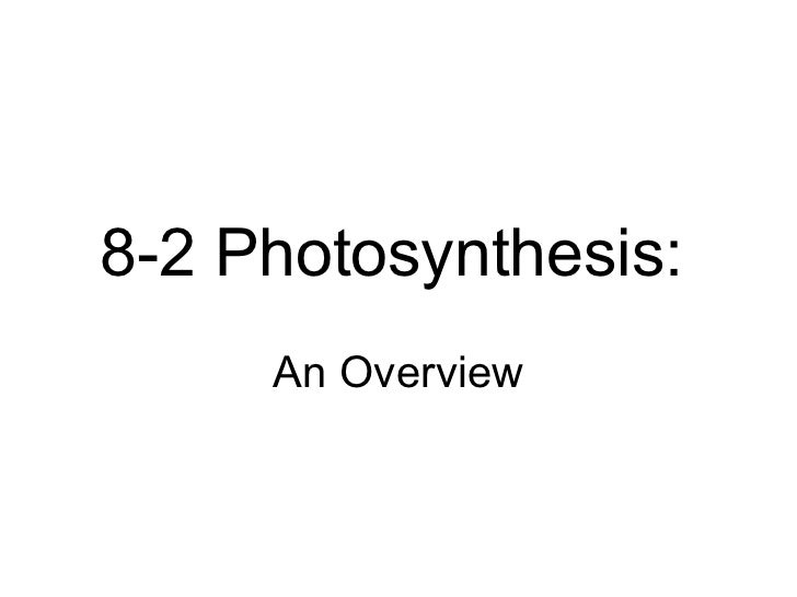 Biology - Chp 8 - Photosynthesis - PowerPoint