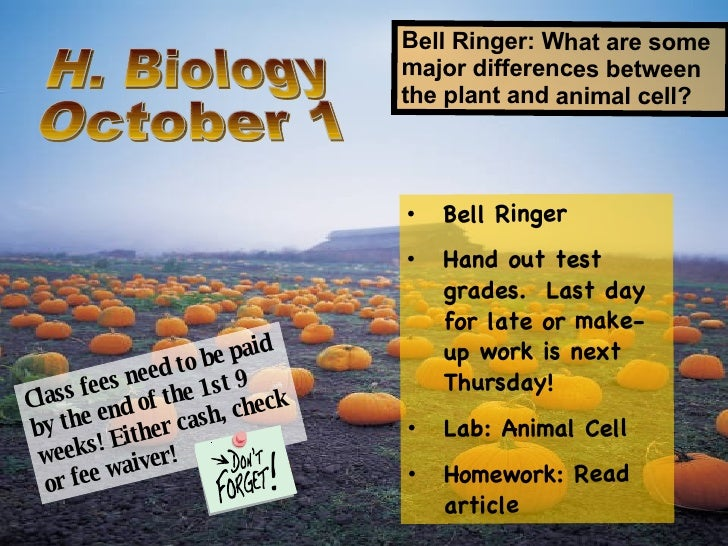 H. Biology October 1 Bell Ringer: What are some major differences between the plant and animal cell? <ul><li>Bell Ringer <...