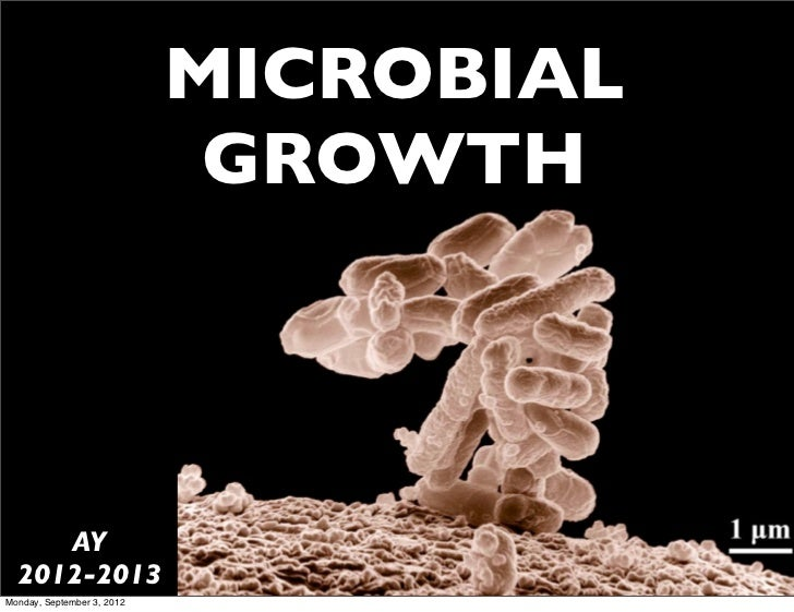 MICROBIAL                             GROWTH     AY  2012-2013Monday, September 3, 2012