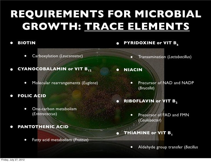 bacterial growth requirements Culture media and cultivation of bacteria one factor that greatly influences bacterial growth is their oxygen requirements clearly, the.