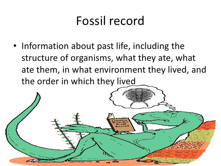 Index fossil dating method 2