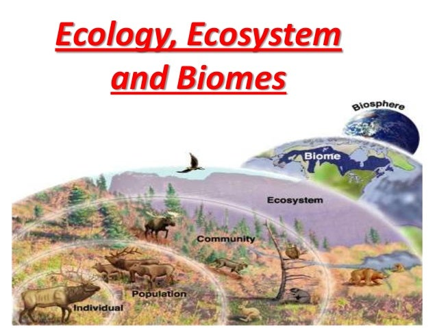 Ecology, Ecosystem and Biomes