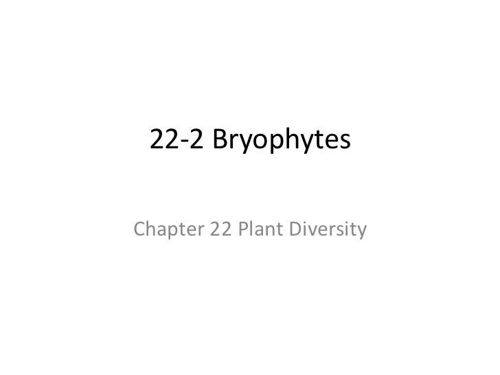 22-2 Bryophytes<br />Chapter 22 Plant Diversity <br />