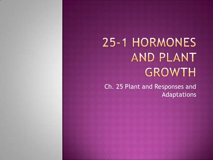 25-1 Hormones and Plant Growth<br />Ch. 25 Plant and Responses and Adaptations<br />