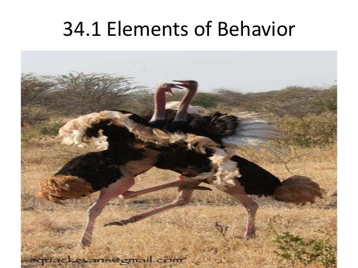 34.1 Elements of Behavior <br />
