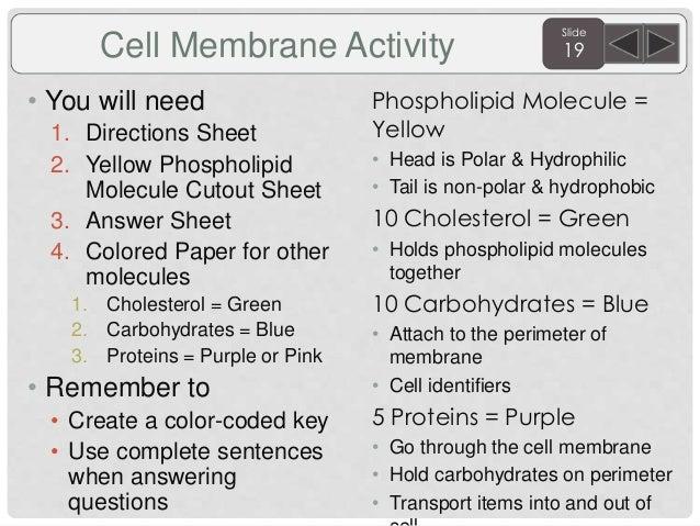 Biology agenda and targets 2015 sem. 1 for posting