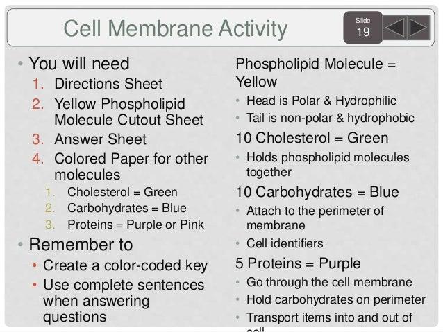 Biology agenda and targets 2015 sem. 1 revised.3