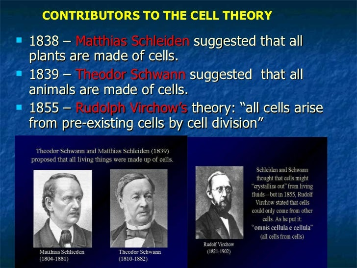 Biology cell theory-and-and spontaneuous generation