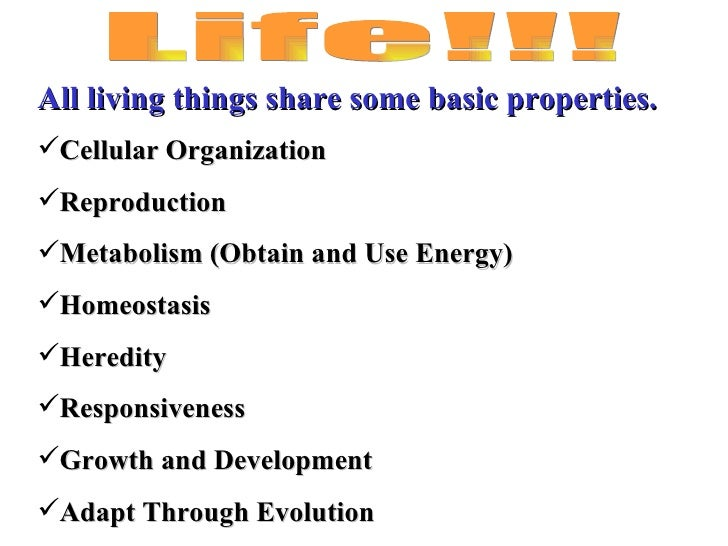 Biology the study of life characteristics of living things worksheet
