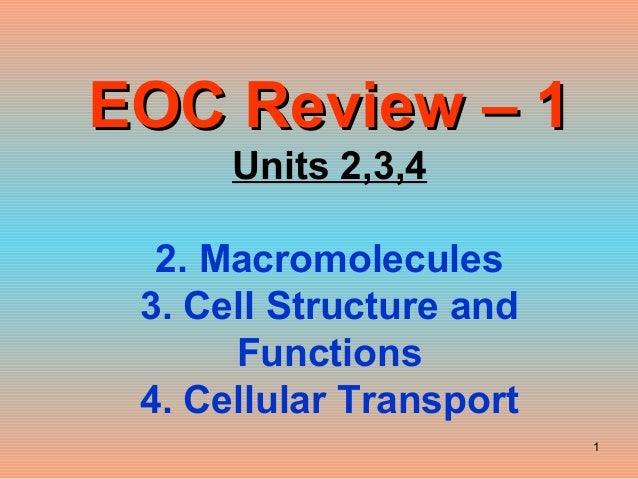 Biology Eoc Review 1