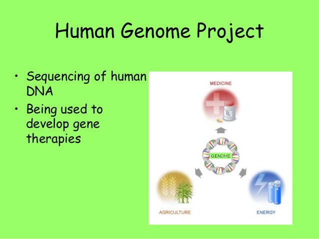 a research of chromosome that determine the sex of an organism Free calcutta chromosome papers,  essays research papers] 525 words  the x and y-chromosomes determine the sex of an organism.