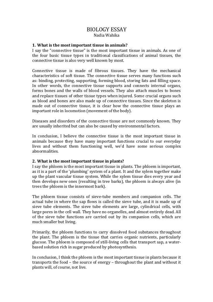 Analysis Essay Example Biology Essaybr Nadia Wahikabr Ul Student Essays Online also Poem Explication Essay Biology Essay Villanova Supplement Essay