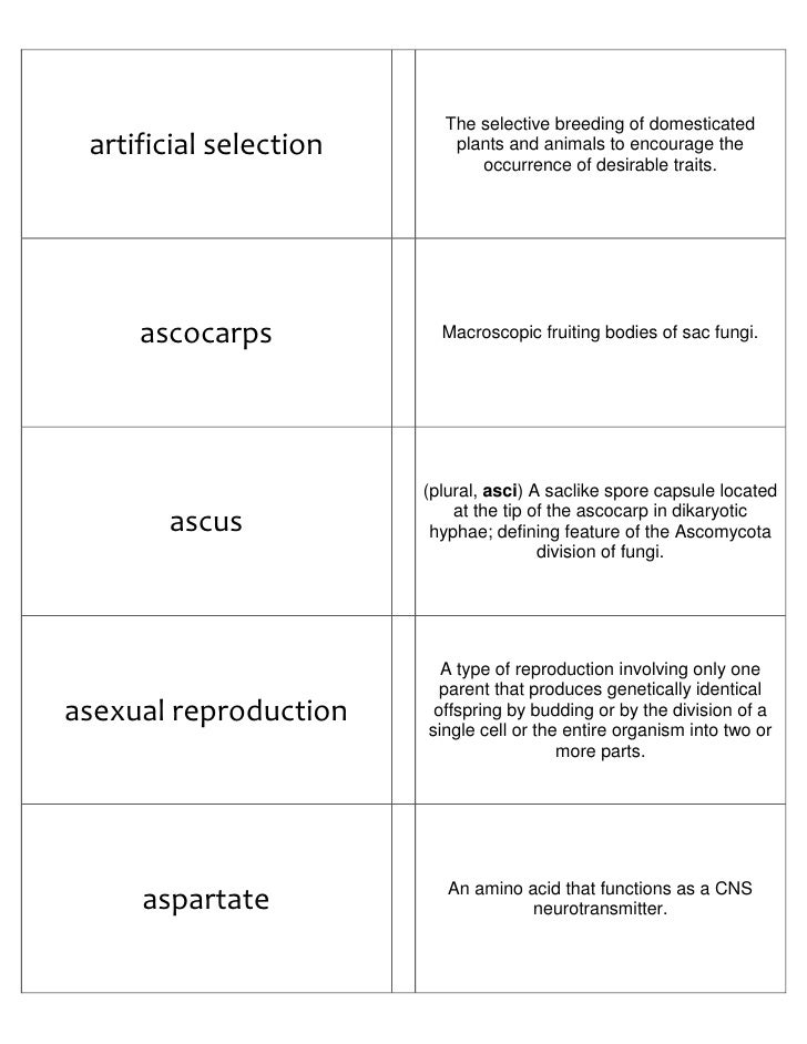 graphic regarding Amino Acid Flashcards Printable named Biology Flash Playing cards Section I